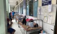 Clip: Hàng chục công nhân nhập viện vì...thuốc diệt mối mọt