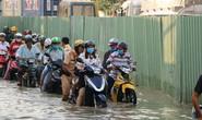 LÚN Ở TP HCM ĐẾN MỨC BÁO ĐỘNG: Mất cảnh giác, hậu quả sẽ khủng khiếp