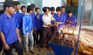 Cơ cấu lao động của Việt Nam còn lạc hậu