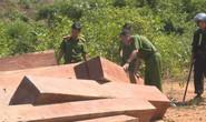 Điều công an khác địa bàn đi triệt phá đường dây khai thác gỗ lậu cực lớn