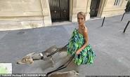 Họa mi Celine Dion gây sốc với loạt ảnh quái lạ