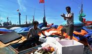 NHỮNG KÌNH NGƯ CỦA BIỂN: Lý Sơn - miền sói biển