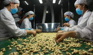 Phòng vệ khi Mỹ - Trung so găng tiền tệ: Xuất khẩu ứng phó sớm