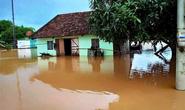 Nước sông Đồng Nai dâng cao, 1 người rơi xuống cống tử vong