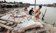 Hạn hán và đập nước làm khô cạn sông Mekong