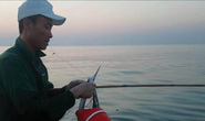Nhiều người lao xuống biển Thừa Thiên Huế săn cá bơi sát bờ
