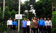 Đồng Tháp: Gắn biển công trình Thắp sáng đường quê