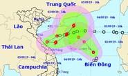 Hướng di chuyển hút nhau của 2 áp thấp nhiệt đới trên Biển Đông