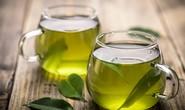 Thần dược trong trà xanh đẩy lùi siêu bệnh mà kháng sinh bất lực