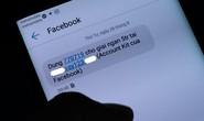 Bị chặn mã OTP, nhiều người dùng không vào được Facebook, Instagram