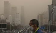 Phát hiện tác động đáng ngại của không khí ô nhiễm lên trí não