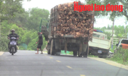 Vụ tài xế xe quá tải trình diện CSGT trong nhà dân: Trung tá CSGT bị kỷ luật