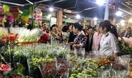Hoa cắt cành phong phú, kiểng chậu tăng giá