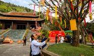 Lễ Hội Thần Tài, điểm đến hấp dẫn ngày Tết ở Đà Nẵng
