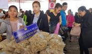 Thừa Thiên - Huế: 1.000 công nhân vui Tết sum vầy