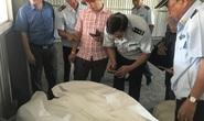 Hải quan TP HCM lại phát hiện 3 container hàng Trung Quốc gắn nhãn Việt Nam