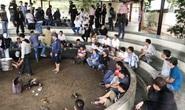 Bắt giam 13 đối tượng sát phạt tại trường gà lớn chưa từng có ở Phú Yên