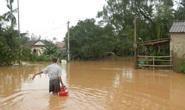 Một phó hiệu trưởng nghi bị nước cuốn mất tích khi qua cầu tràn