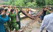 Đưa được 19 người và thi thể một công nhân Thủy điện Rào Trăng 3 ra khỏi rừng