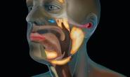 Phát hiện cơ quan chưa từng biết trong cơ thể người, giúp chữa ung thư an toàn