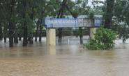 Mưa lũ lịch sử, huyện Cẩm Xuyên thiệt hại hơn 1.100 tỉ đồng