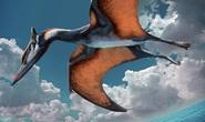 Sinh vật chưa từng thấy, nửa chim, nửa khủng long lộ diện ở Trung Quốc