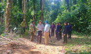 Đi rừng, 2 người dân Quảng Bình bị lũ cuốn tử vong