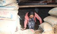 Người dân Quảng Nam đào hầm tránh bão số 9