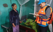 600 ngôi nhà chống bão đã an toàn trong bão lũ miền Trung