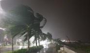 Phó thủ tướng Trịnh Đình Dũng: Bà con yên tâm tránh bão, công an có trách nhiệm bảo vệ tài sản cho dân