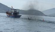 Tàu hàng bị chìm, 11 thuyền viên may mắn sống sót