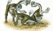 Xuất hiện 4 quái thú sa mạc nửa khủng long, nửa chim, cánh mọc 2 ngón
