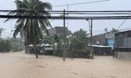 Khánh Hòa: Thiệt hại ban đầu do bão số 12