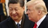 Bất lợi trong bầu cử nhưng Tổng thống Trump vẫn ép Trung Quốc tới cùng