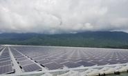 ĐBQH lo ngại pin điện mặt trời hết hạn để nướng bò một nắng, dân chuyên ngành nói gì?