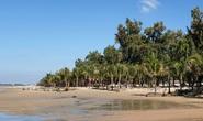 Lấn đất, trồng hàng trăm cây dừa ở bãi biển