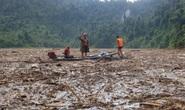 CLIP: Cây rừng phủ kín hồ Sông Tranh 2, lực lượng cứu hộ... đi trên mặt nước