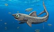 Vua thủy quái 365 triệu tuổi: Loài chưa từng thấy trên thế giới