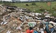 Cận cảnh hàng trăm tấn rác tấn công Khu tái định cư 38 ha ở quận 12
