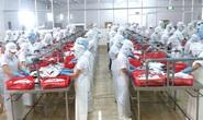 Thu ngân sách từ các doanh nghiệp trong KCX-KCN TP HCM ước giảm 9%