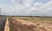 Hai doanh nghiệp Hà Nội trúng đấu giá đất vàng tại Đồng Nai