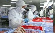 CÔNG TY CP SÀI GÒN FOOD: Chi 48 tỉ đồng chăm lo Tết cho người lao động