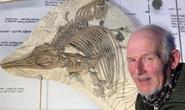 Đi dạo, người đàn ông đào được sinh vật lạ 150 triệu tuổi, to như cá mập