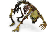Hãi hùng con thú điên nguyên vẹn 66 triệu tuổi, sống giữa khủng long