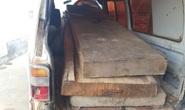 Đình chỉ 3 tháng chủ tịch xã bắt gỗ lậu về… biếu cán bộ