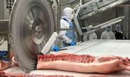 Giá thịt heo Tết sẽ tăng?