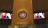 Thủ tướng có thông điệp nhân Ngày Quốc tế phòng chống dịch bệnh do Việt Nam đề xuất