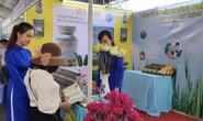Bà Rịa- Vũng Tàu: Hơn 150 doanh nghiệp tham gia kết nối cung cầu
