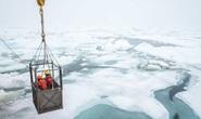 Phát hiện 12 sinh vật chưa từng thấy trên Trái Đất ẩn nấp dưới biển băng