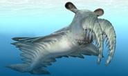 30 con mắt trong đá hé lộ quái vật khủng khiếp 500 triệu tuổi